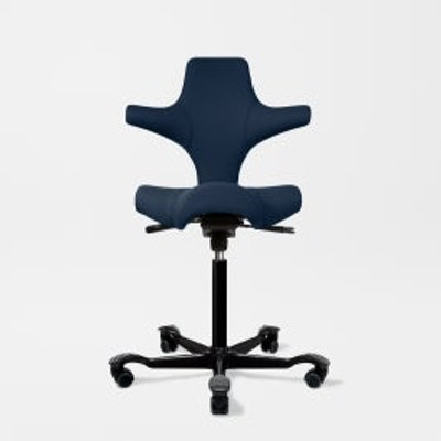 Capisco Ergonomic Office Chair - FullyCertified B CorporationBBB Accredited Busi