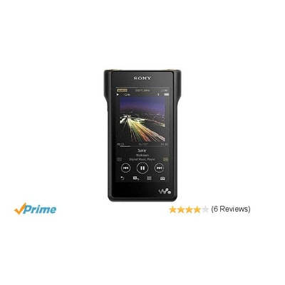 Amazon.com: SONY digital audio player Walkman NW-WM1A B (Black): Home Audio & Th