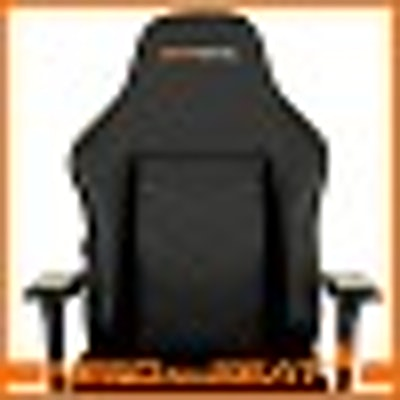MAXNOMIC - Leader | NEEDforSEAT USA