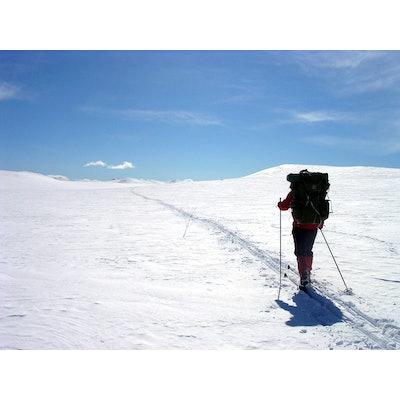 Skiing - Wikipedia