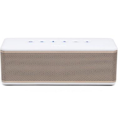 RIVA AUDIO | RIVA S - Premium Wireless Bluetooth Speakers   | RIVA AUDIO