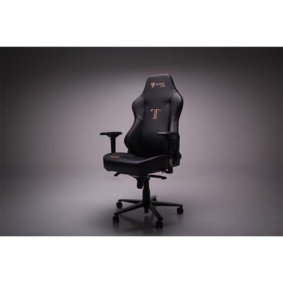 Secretlab TITAN            – Secretlab US