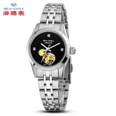 SEAGULL M149SK Automatic Mechanical Sliver Skeleton Men's Watch