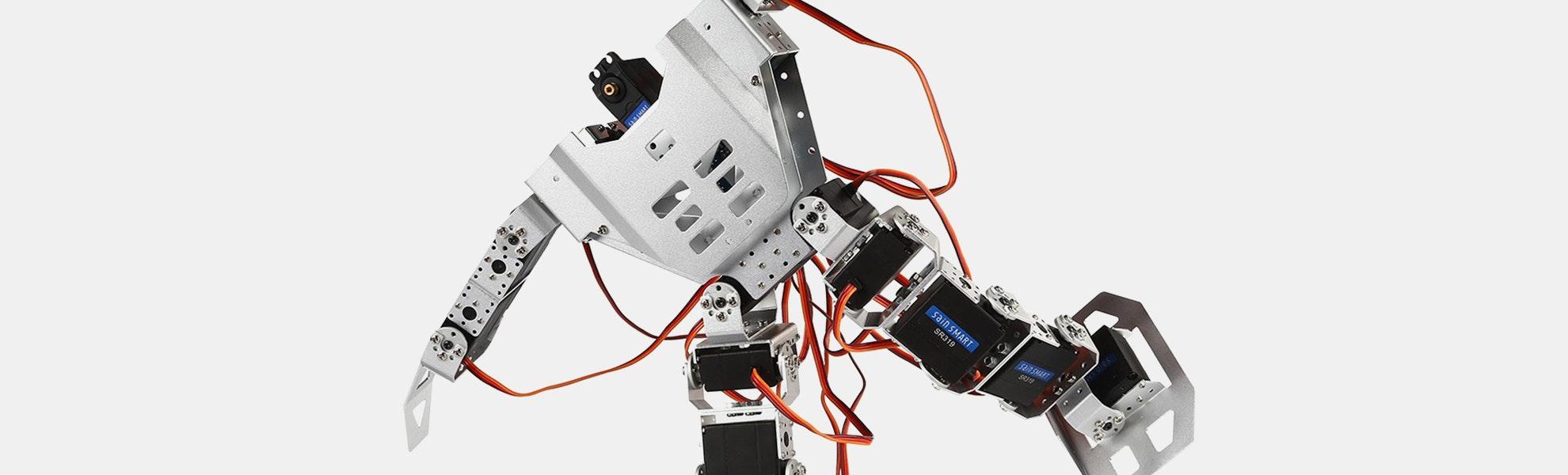 17DOF Biped Robotics Humanoid Robot Bundle