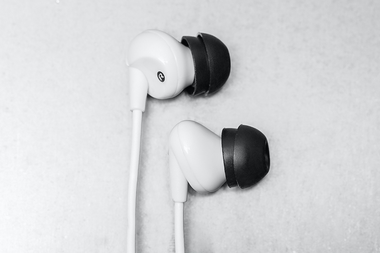 HiFiMAN RE300 Earphones