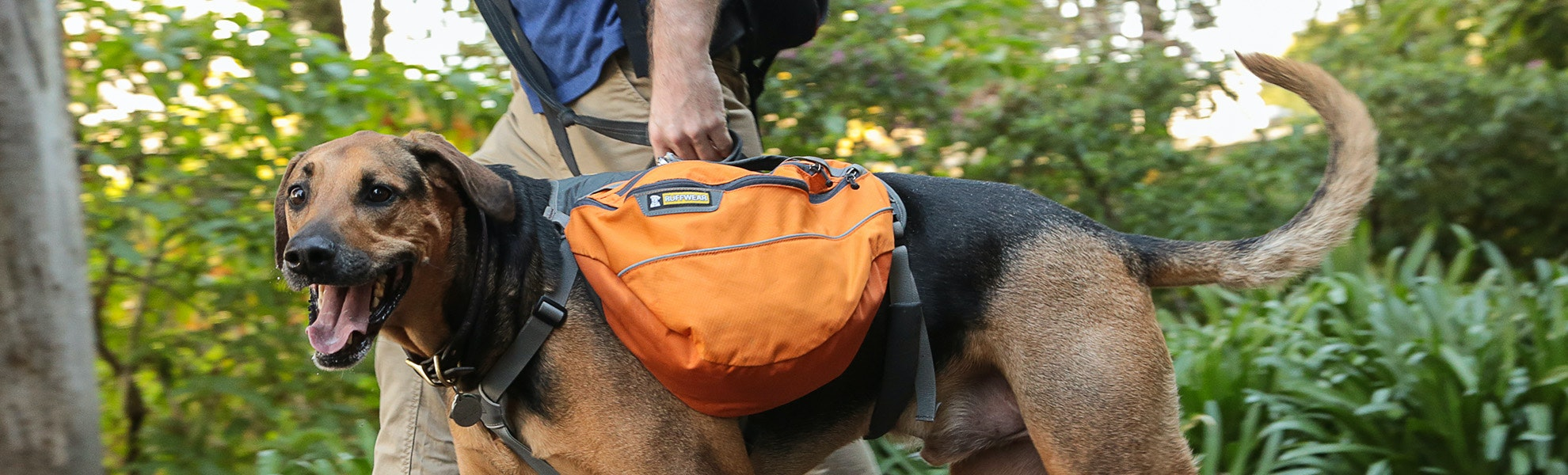 Ruffwear Approach and Palisades Dog Packs