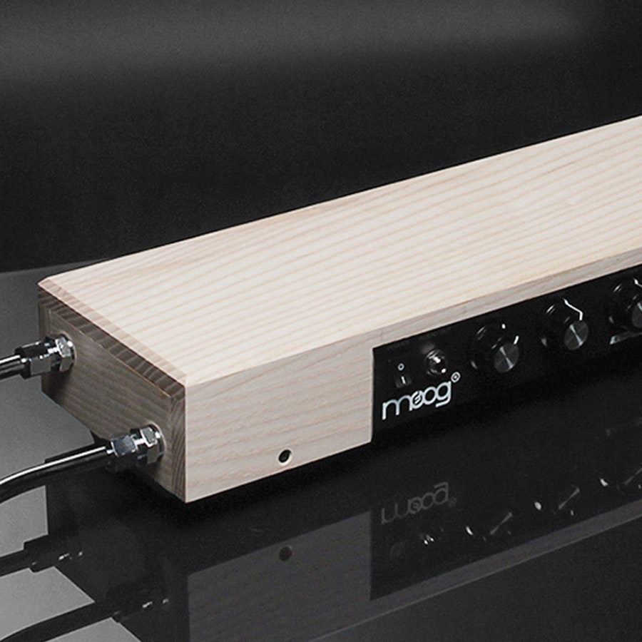 Moog Etherwave Theremin Kit (Standard)