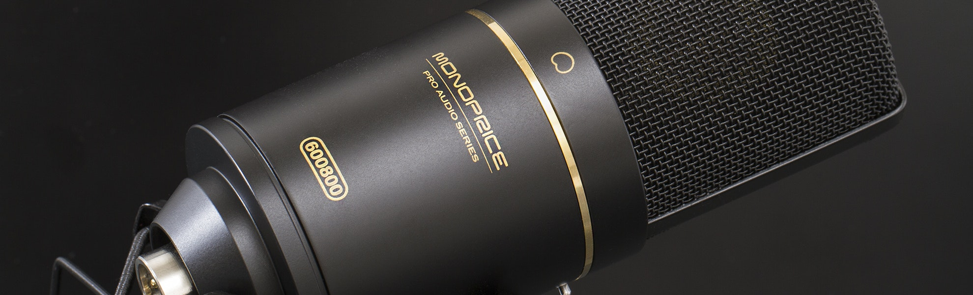 Monoprice Large Diaphragm Studio Microphone