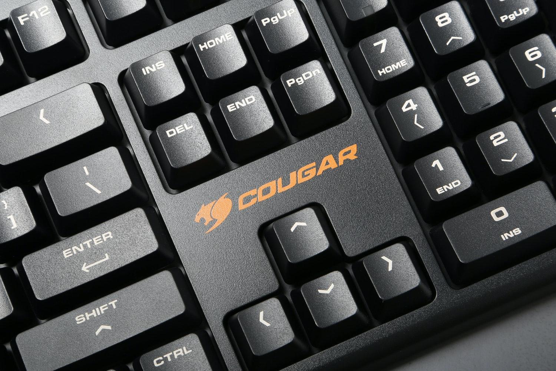 Cougar Attack II