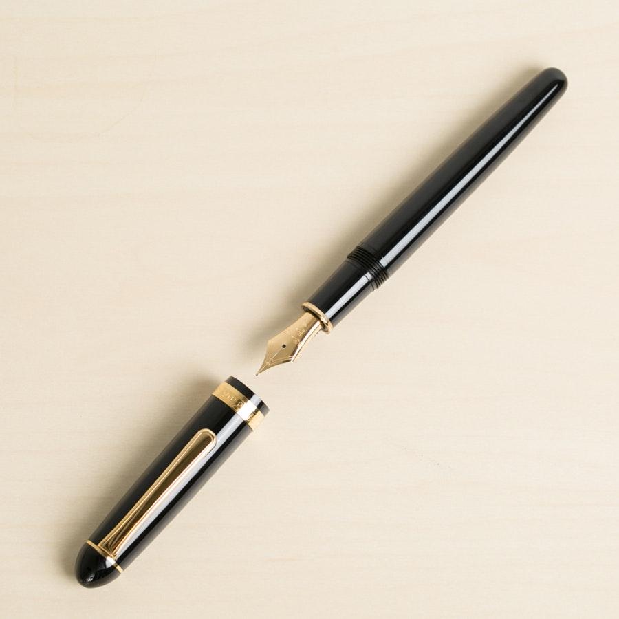 Platinum 3776 Fountain Pen