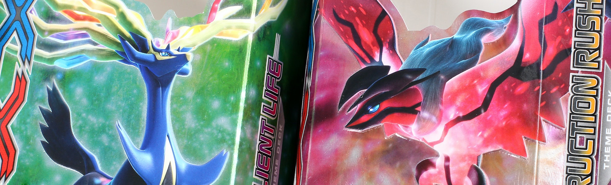 Pokemon XY Theme Deck Starter Bundle