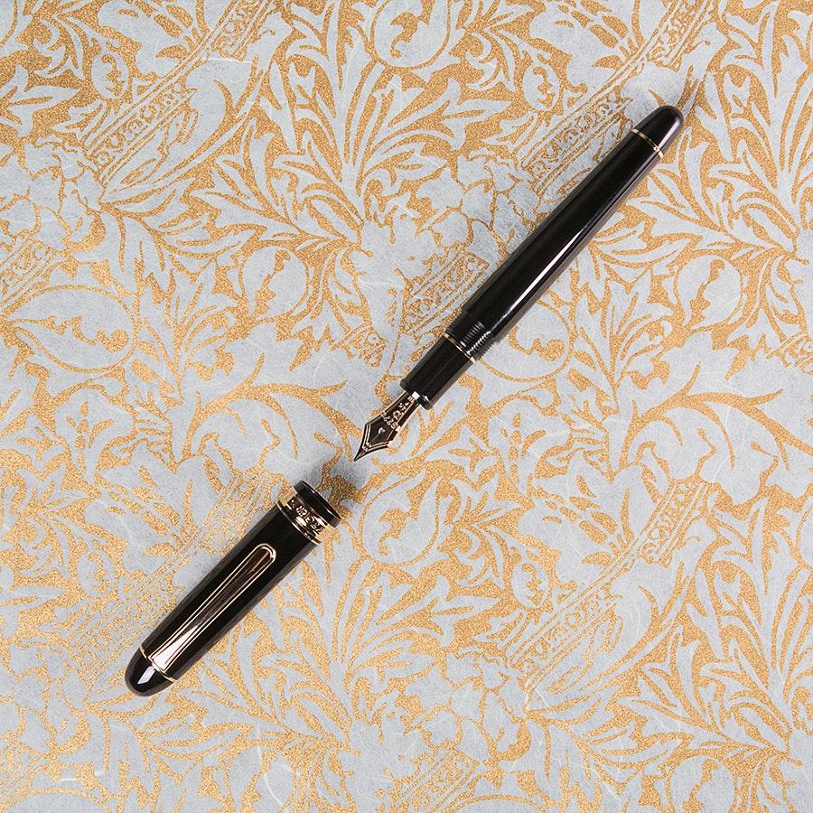 Platinum 3776 Century Fountain Pen