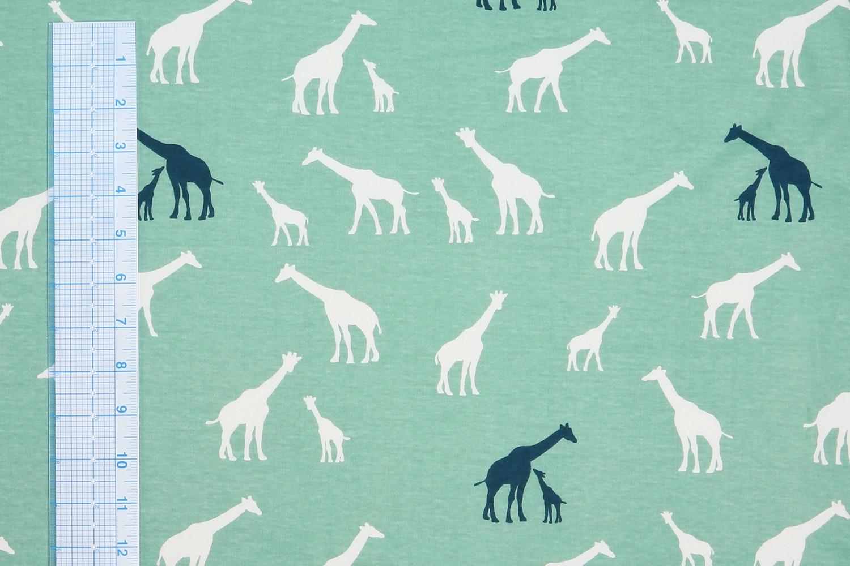 Giraffe Farm (Pool)