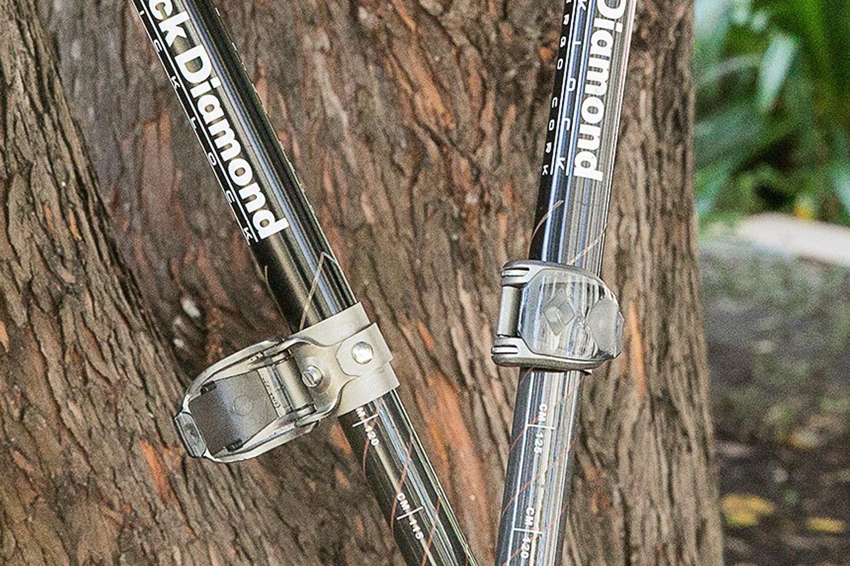 Black Diamond Alpine Ergo & Carbon Cork Poles