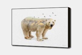 Wild I Shall Stay | Polar Bear - White