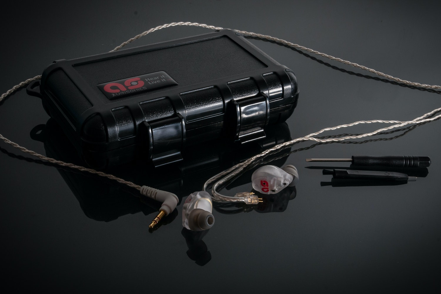 Aurisonics ASG-2.5 14.2mm Dynamic Hybrid IEM