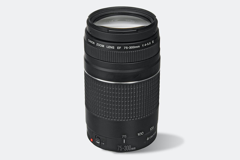 Canon EOS T6 EF-S 18–55mm & EF 75–300mm Bundle