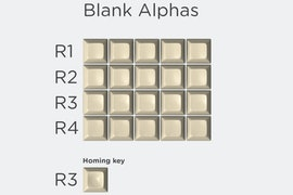Blank Alphas - $9.99