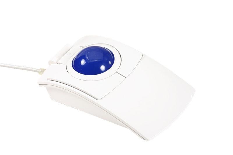 CST2445WGL-RC White (Glow blue) (-$10)