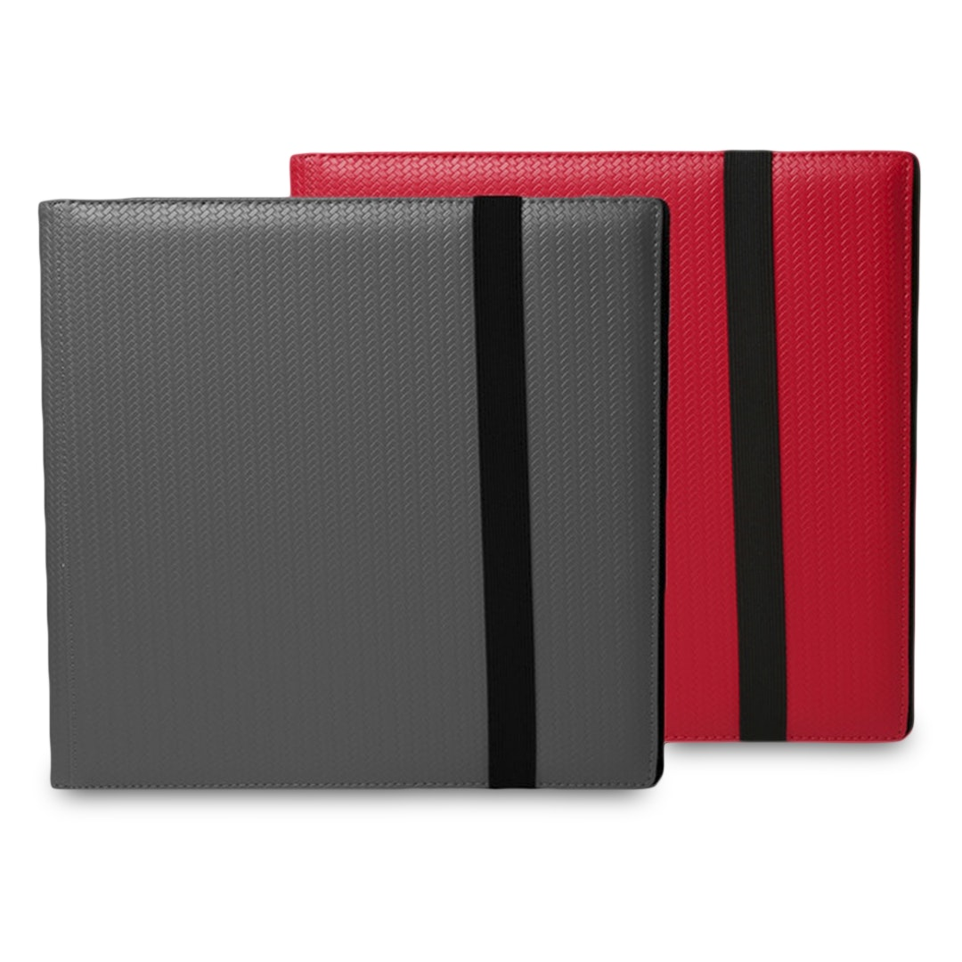 DEX Protection LE 12 Pocket Binder (2-Pack)