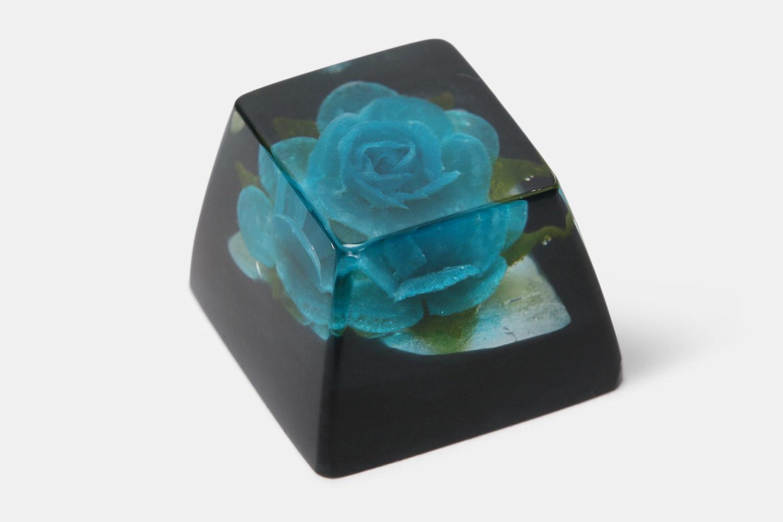 OEM - Rosa Blue (Blue Rose / Black)
