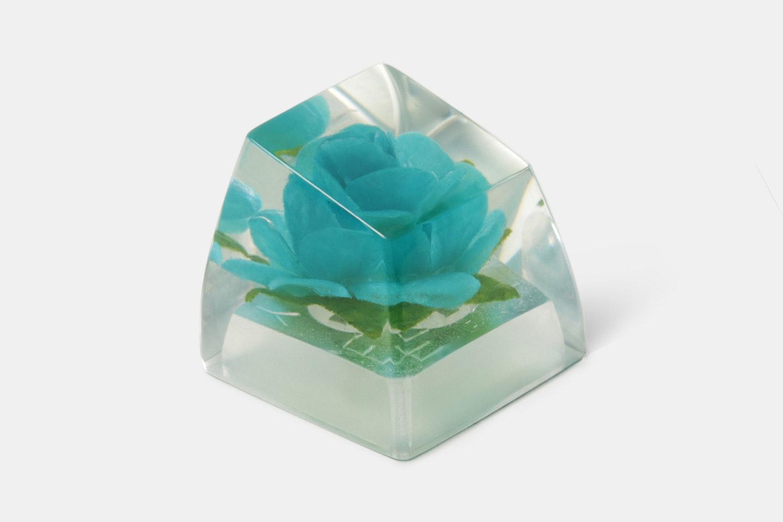 SA Blue Rose - Crystals