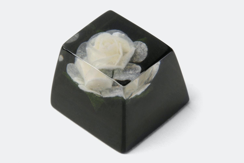 OEM –Rosa Alba (White Rose / Black)