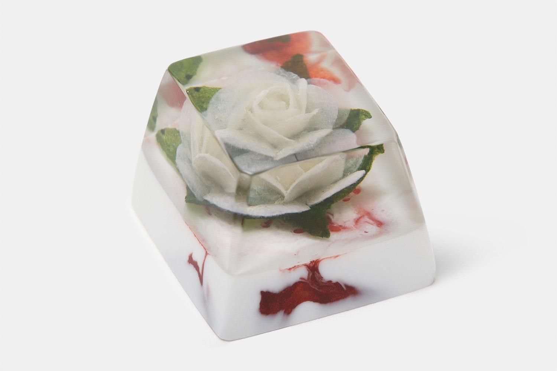 OEM - Rosa Alba (White Rose / Fire Brick)