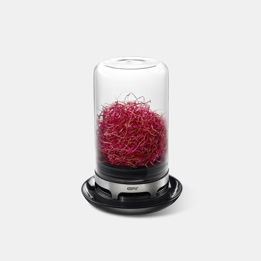 GEFU Sprouting Jar
