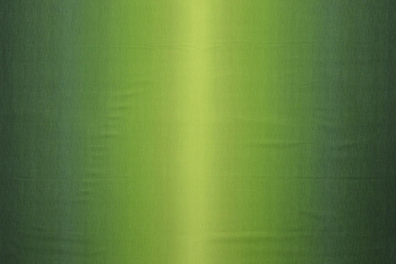 11216204 – Green