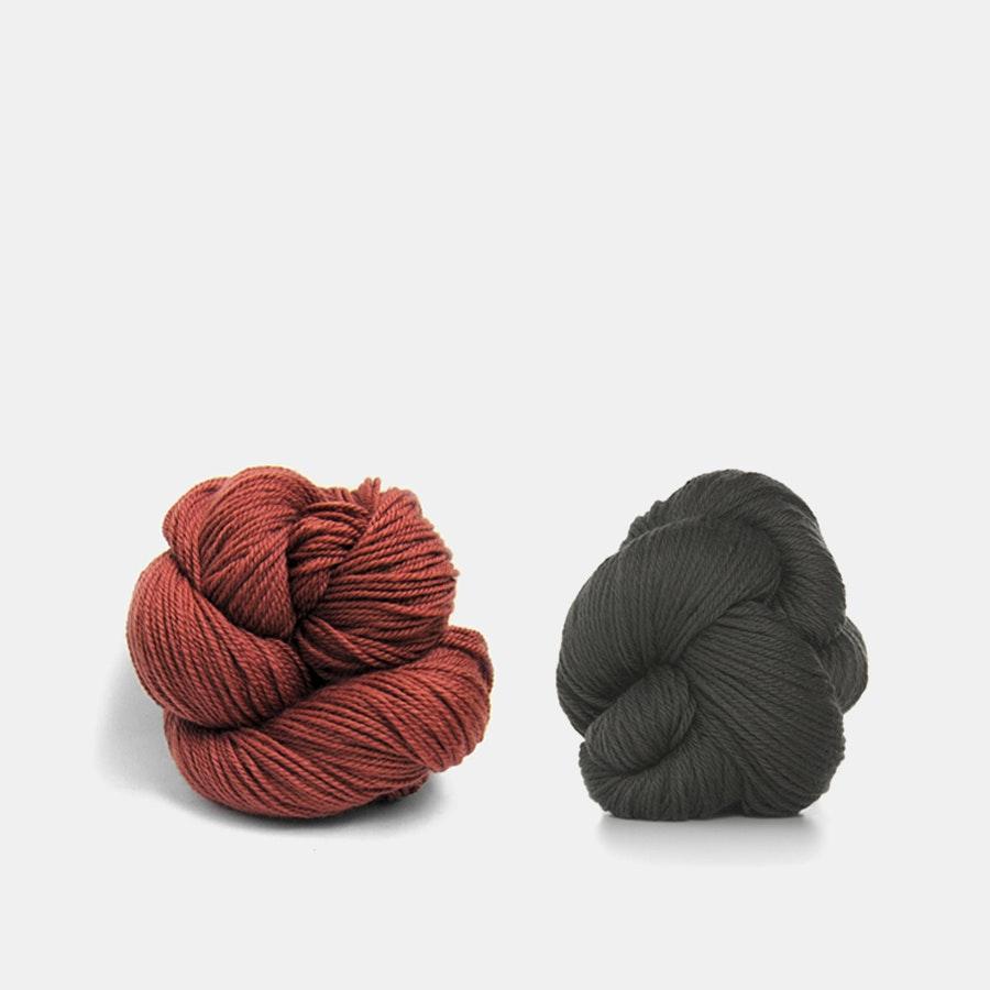 Gems Sport Yarn by Louet Earth Tones (2-Pack)