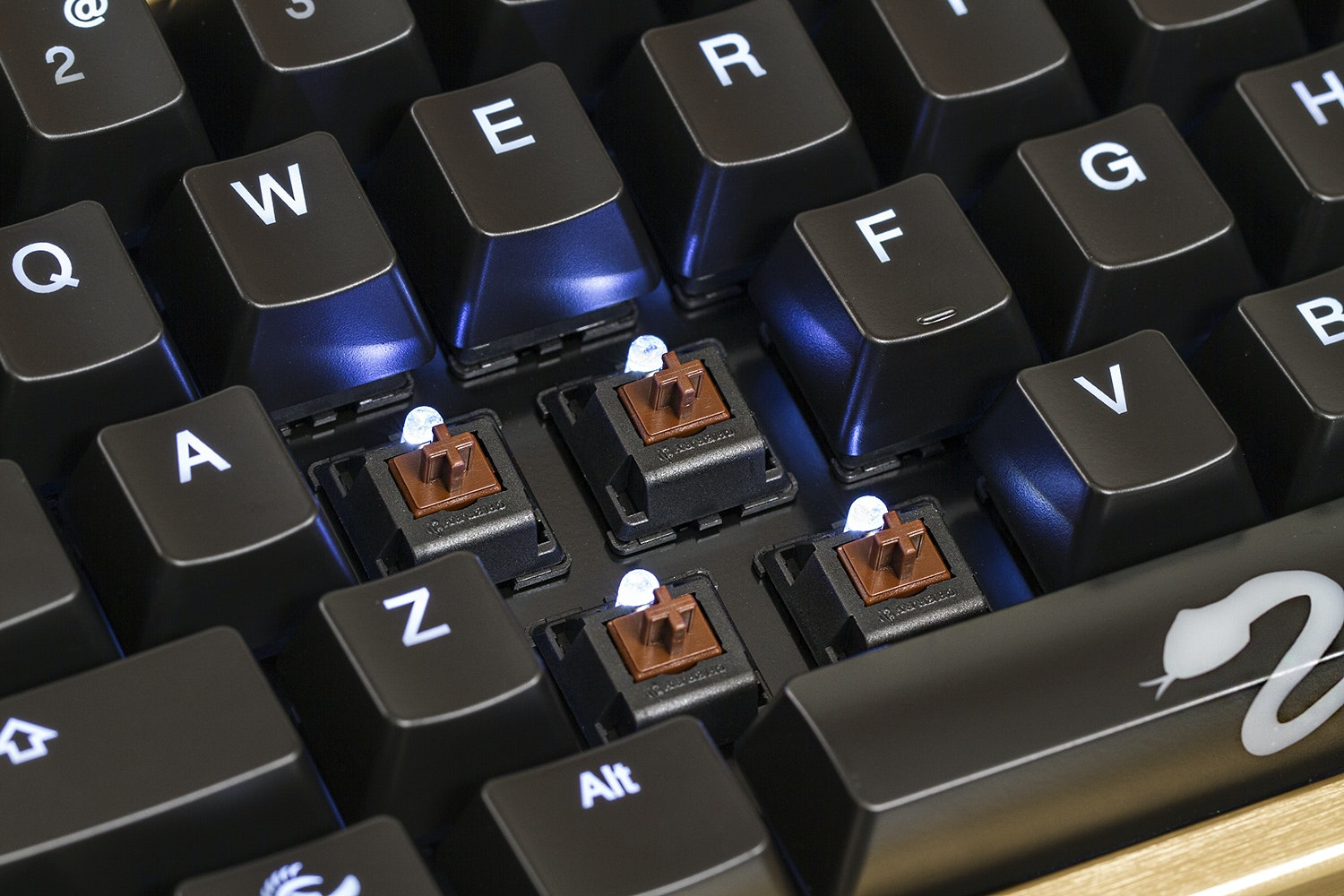 Ducky Shine 3 Gold Edition with Ducky Wrist Rest