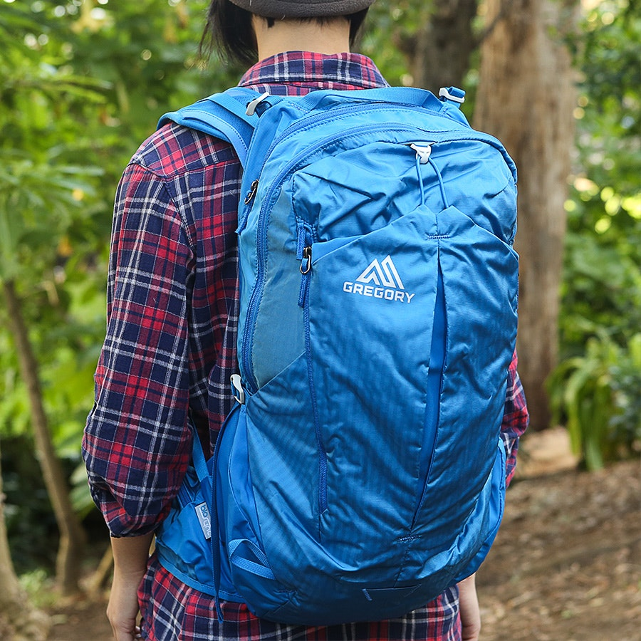 Gregory Miwok Daypack
