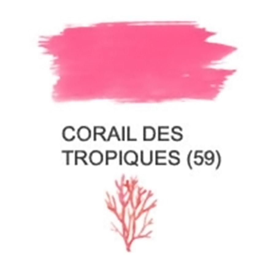Corail Des Tropiques