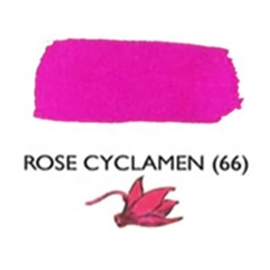 Rose Cyclamen