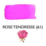 Rose Tendresse