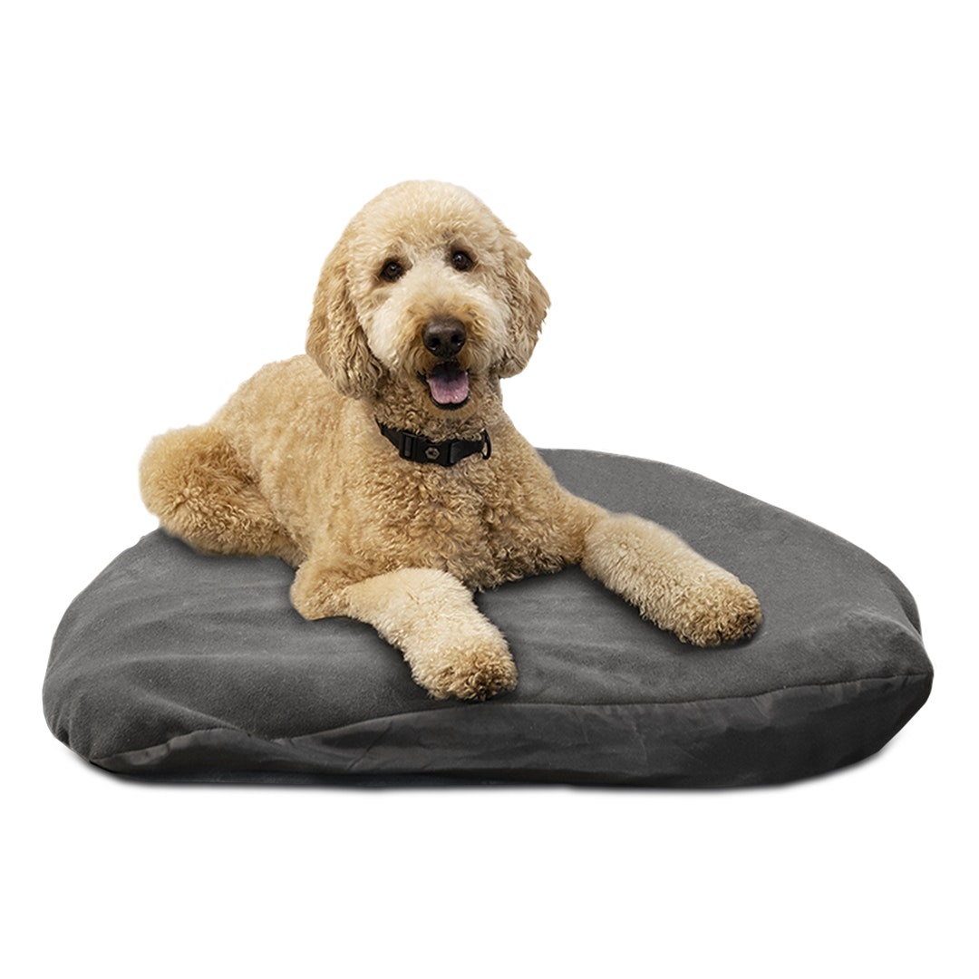 Klymit Moon Dog Bed