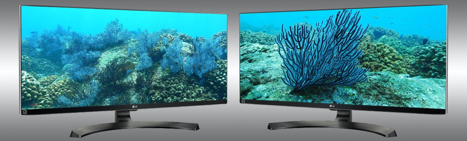 "LG 34"" Ultra Wide 1440p 21:9 Monitor 34UM88C-P"