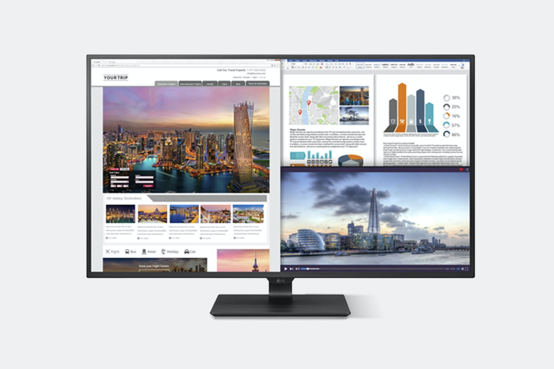 LG 43-Inch 4K UHD IPS LED Monitor 43UD79-B