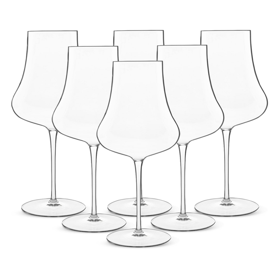Luigi Bormioli Tentazioni Wine Glasses (Set of 6)