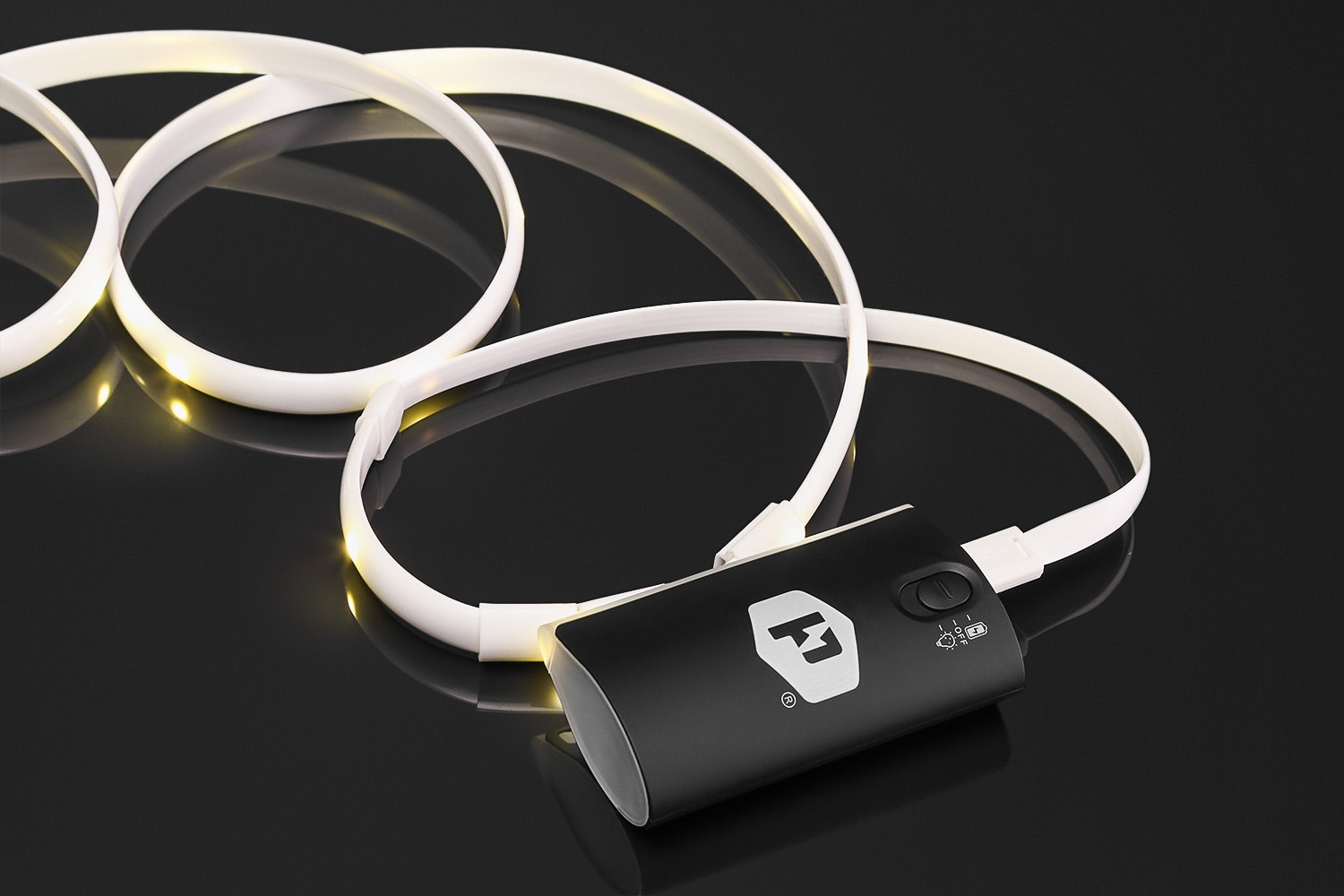 Luminoodle Light Rope and Powerbank