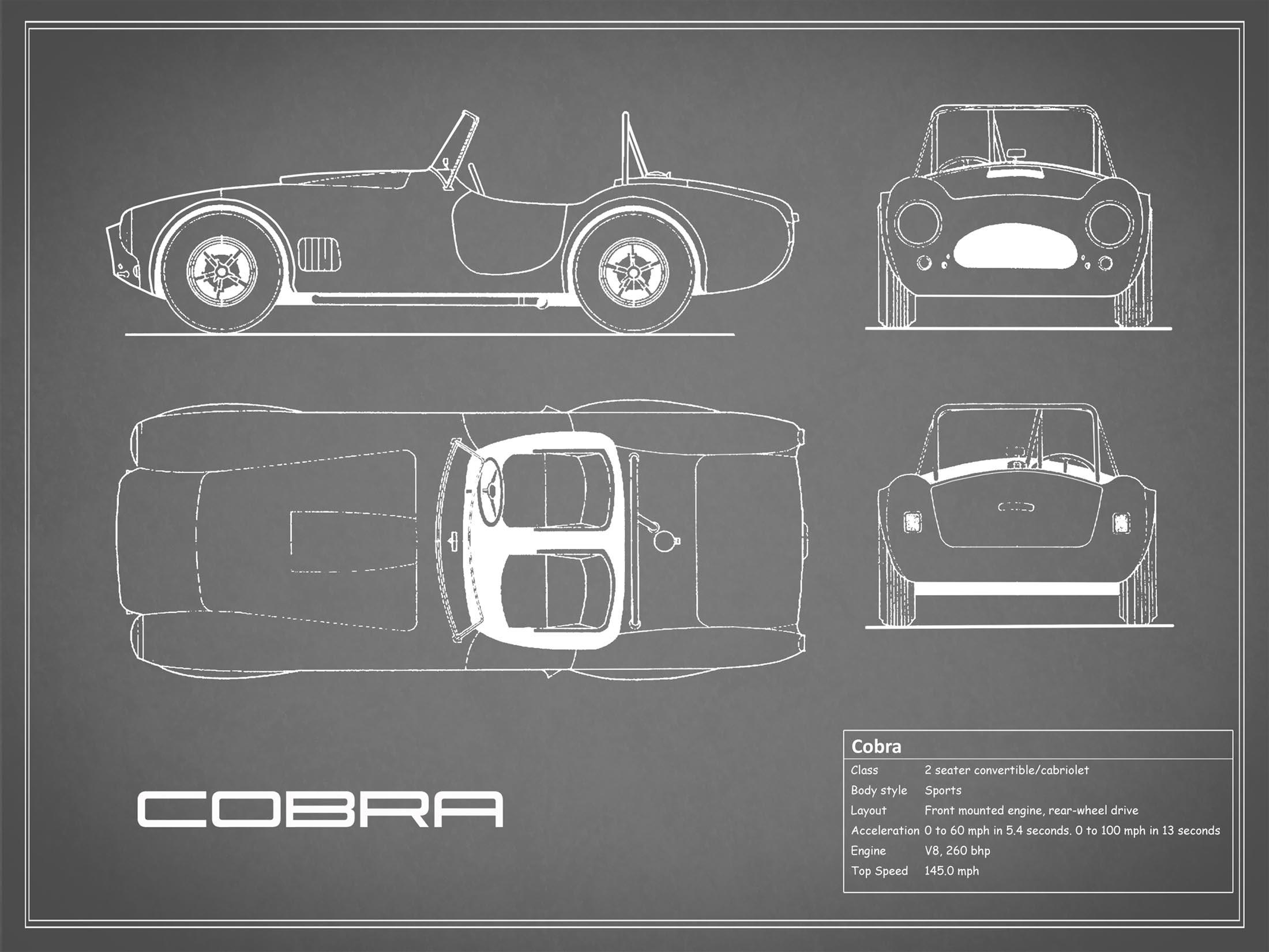 Cobra - Gray
