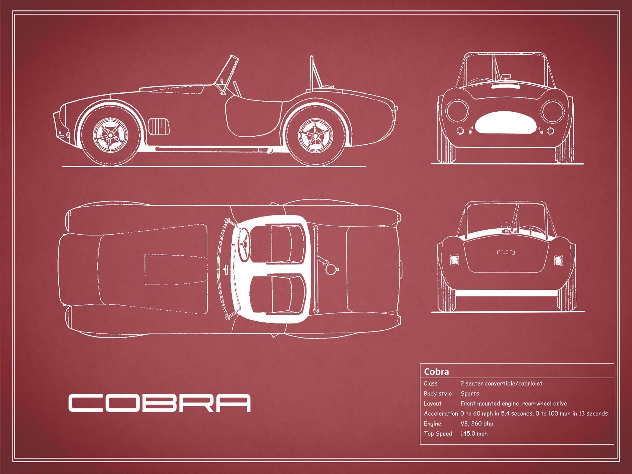 Cobra- Red