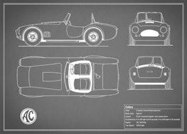 AC Cobra - Gray