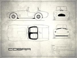 Cobra - White