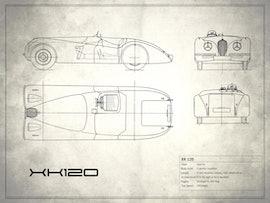 Jaguar XK 120 - White