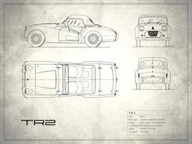 Triumph TR2 - White