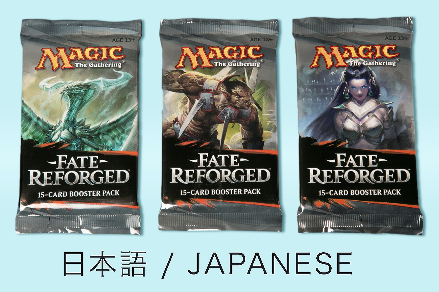 Fate Reforged in Japanese