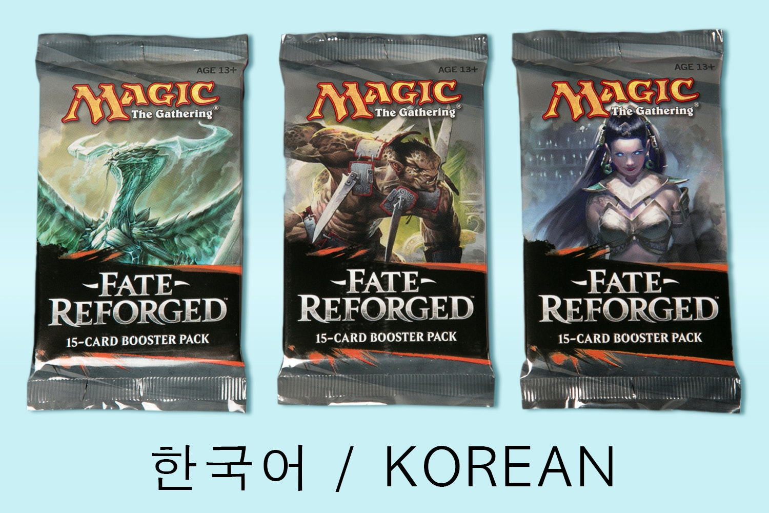 Fate Reforged in Korean
