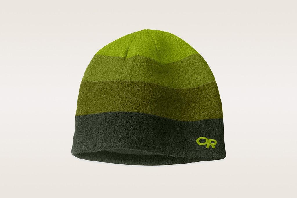 Evergreen/Hops